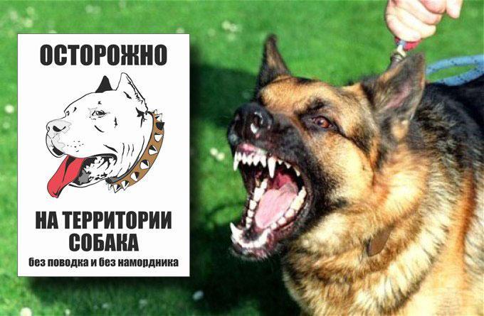 Изготовление табличек осторожно злая собака